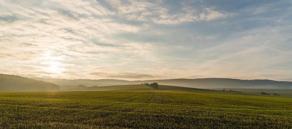 Bundestagswahl Klima