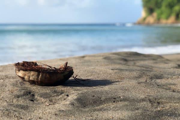 Martinique Reisebericht