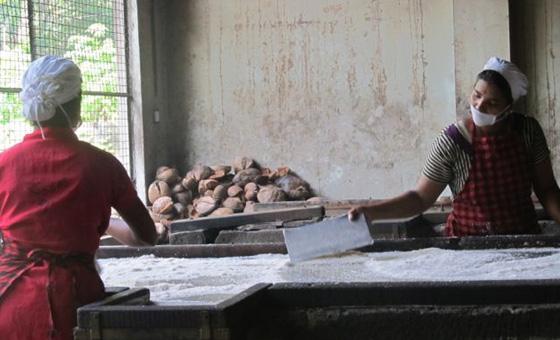 indien faires kokosöl